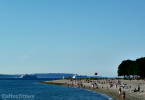 golden gardens Seattle