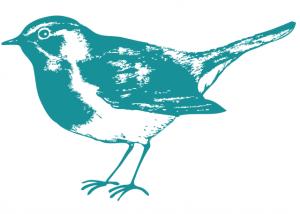 bird-2
