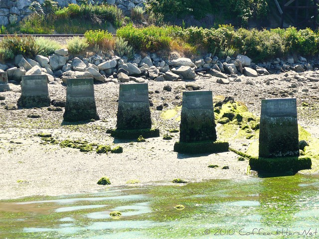 concrete forms in Bellingham