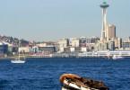 Sea Lions in Seattle - CoffeeJitters.Net