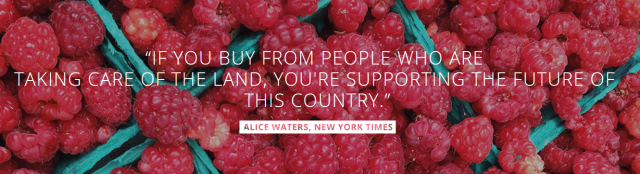 alice waters quote